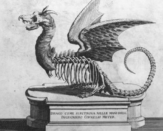 engraving published in a 1696 book by Dutch civil engineer Cornelius Meyer - apparent dragon, partially decomposed