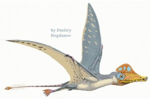 "The long-tailed ""basal"" pterosaur Scaphognathus crassirostris - sketch by the artist Dmitry Bogdanov"