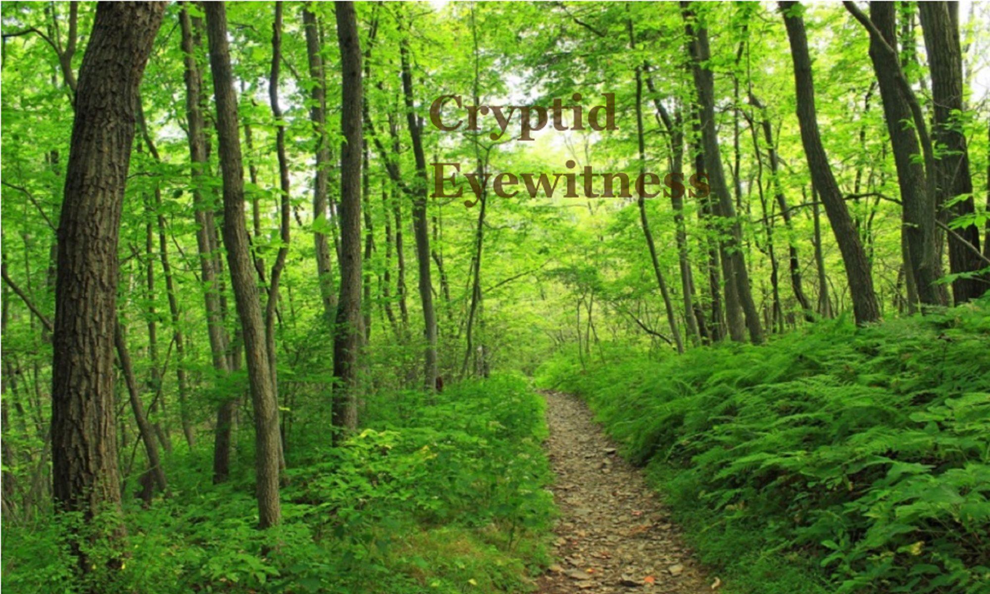 Cryptid Eyewitness